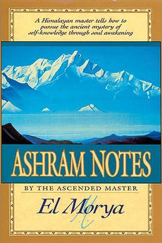 Cover of the book Ashram Notes